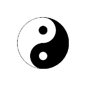 Tai Chi Tao Stichtse Vecht